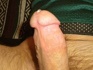 Very erotic photo! Seeing the drip of precum on your cock head is beautiful! Please let me taste your precum as you thrust deeply into my mouth. Letting me feel your balls slap against my face as the pace picks up. I could gag on your cock all day long!  ~Thomas