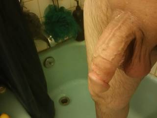 Freshly shaved and cleaned for my wife to play
