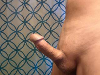 Now if I had some pussy riding this  stiff dick would be great.