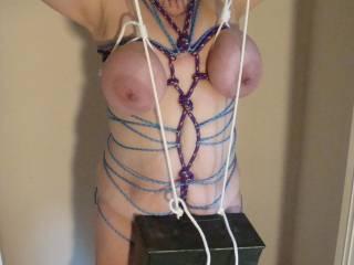 10 lb box hung from tits