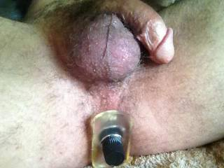 mmm, I have an idea....how would it be if my hubby replaced your little toy, by easing his hot cock deep into your sexy ass, while I slowly ground my wet slit against your face......