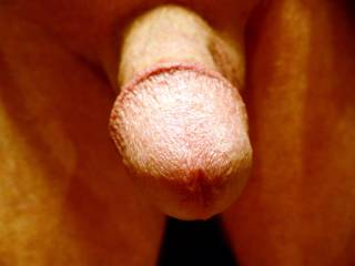 Just a few close-up shots of my dick for yo