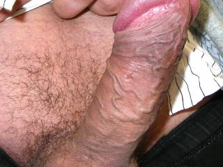 See my fat headed dick again - would you like to suck or something else?