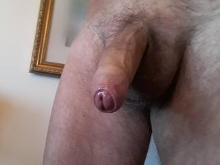 Would love to have a mouth sucking on my cock right now