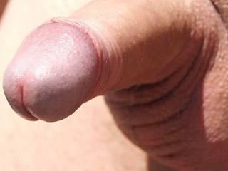 My average dick. Rate it!