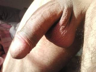 mmm that is a very nice looking cock and nice balls too! would be a delight to wank lick and suck him to make him as hard as possible mmmmm