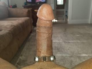Cock ring got my BBC at full attention. Need a ZILF to play with it...takers?