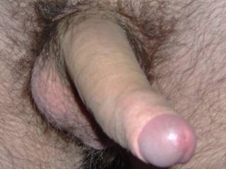 mmm very very nice looking cock and balls would be a delight to share those with your Mrs yum