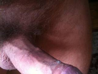 Hard, Horny, hung & wet needing a suck buddy! who wants some? tell me what you think & what you want to do with me!!!!