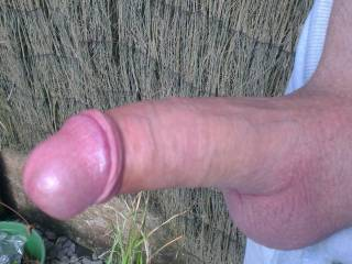 Hubbys awesome shaved cock any ladies fancy some outdoor fun with him?