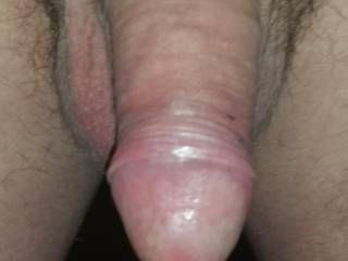 Mmmmm, big, thick and trimmed... Perfect for sucking!!!
