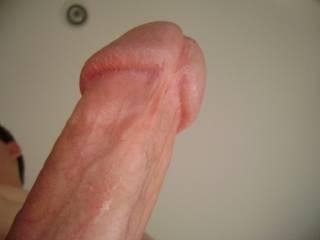 My Cock Head