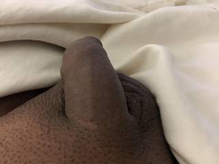 Small cock not hard do you like it