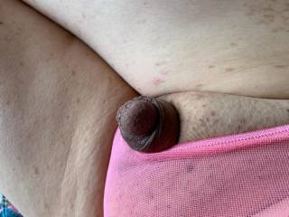 One of my good Z friends thought that I should try sheer panties.  How does my cute little cock look in pink?  He\'s peeking out now.