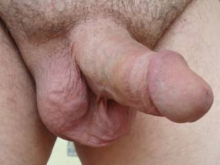 my circumcised shaved cock and waxed balls
