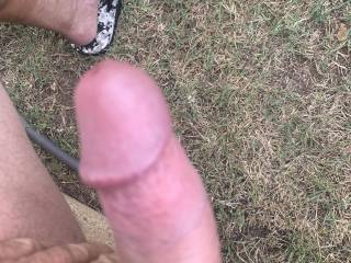 Dam I'm horny this morning, my cock is precumming looking at all these beautiful zoig pics. I wish I could have some playtime with someone