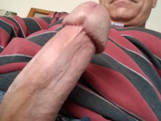 My fat cock ready to fuck you pretty ladies!