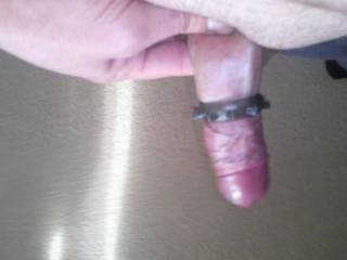cock ring half way down making my bellend swell what u think