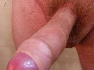 A GREAT HUGE RED HEAD
