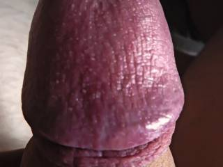 hard cock, foreskin tight retracted