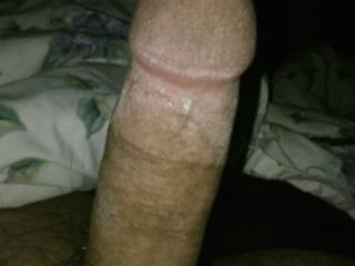 Long hard dick.  What do you think?