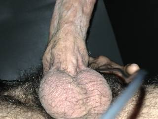 i think i need to shave...unless you like stiff hairy cock ;)