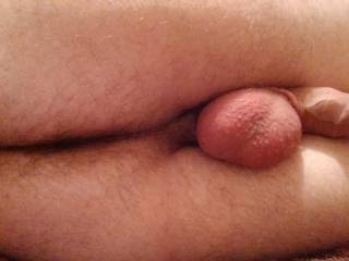 Yes to all, and to nibble on your balls and cock too. Love licking and kissing your hairy ass.