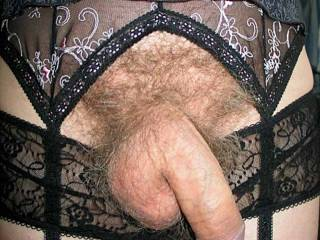 floppy dick hanging out my panties