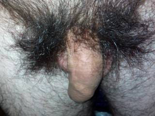 natural dick, hairy masive, needs love :)
