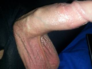 Huge balls and dick ready to fuck a tight pussy!