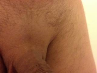 made this picture of my shaven dick at work