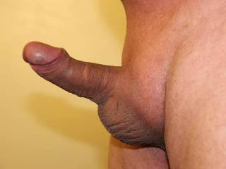 My short dick completely hard - almost 4 inches long - does anyone want it?