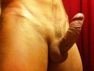 My cock is rock hard and ready for action, so what's next!?