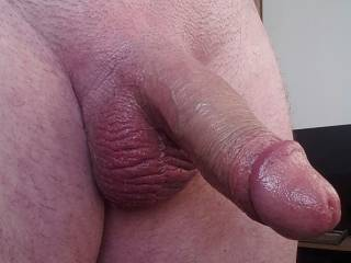 newly shaved