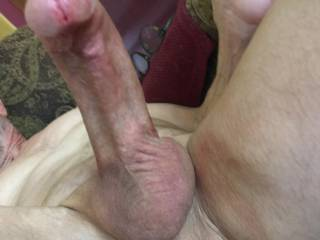 Brian Stoddard's gay hairless penis erection