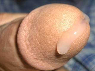 I know that dripping all too well. I love how wet your cock gets. I get horny thinking about it.