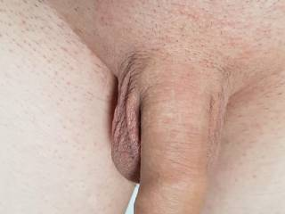 Shaved my dick