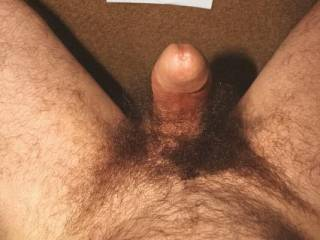 Would love to suck off that thick hairy cock!!!