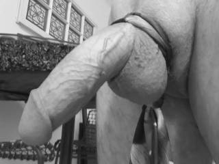 """Classique Noir et Blanc: """"Thick and Hard"""" (Wife dressed Hubby up for your enjoyment and loving!)"""