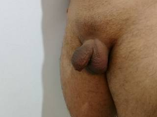 Flacid small dick shaved