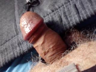 waiting for a mouth or a pussy