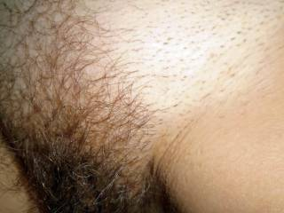 Wife hairy Pussy before she shaved it. hairy, wife, milf, pussy, closeup, amateur