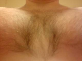 my hairy chest 2