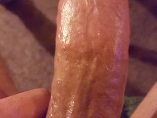 All oiled up and rock hard for a tribute feel free to comment,like or request a load from my nice long throbbing cock