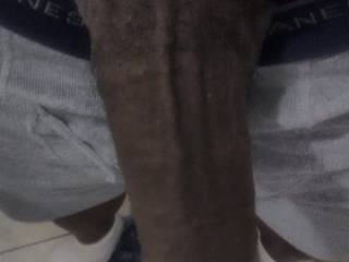 Photos of My Big Black Cock, Hope all you white housewives enjoy. If you are in the area and want it, by all means feel free contact Me. Husbands wanting to see their wives with Me are more than welcome