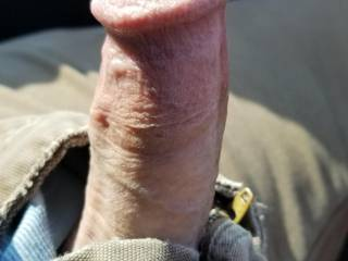 Just my fat cock glistening in the sun waitin to be sucked...