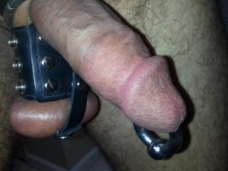 Ball stretcher AND cock ring in place and putting delicious pressure on my balls.  My cock is swollen and so sensitive, especially the head with that 0 GA screw ball ring in place.  It's not going to take much for me to cum...now if I just had a willing a