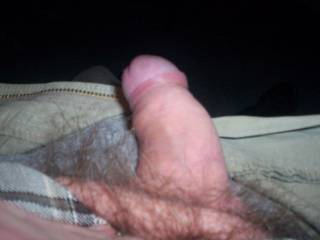 my unshaved dick, it is shaved or trimmed now