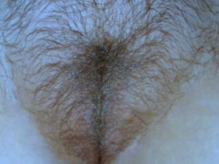 Just a pic of my hairy pussy. I\'d love to have a cock or some cum all over it....