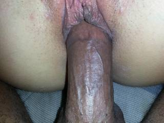 my thick cock filling her white pussy